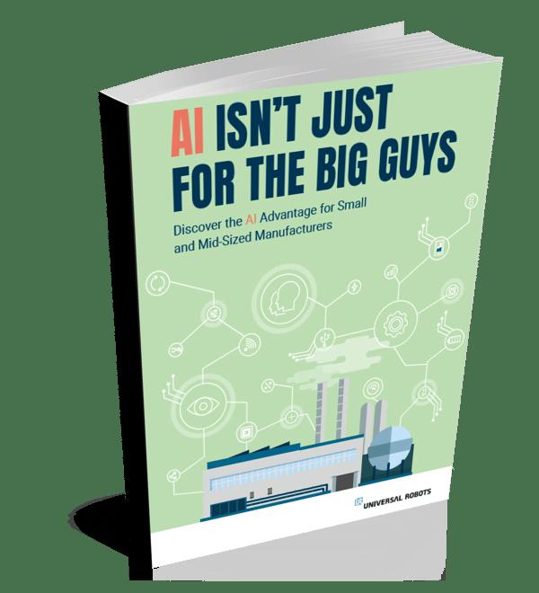 AI Whitepaper booklet
