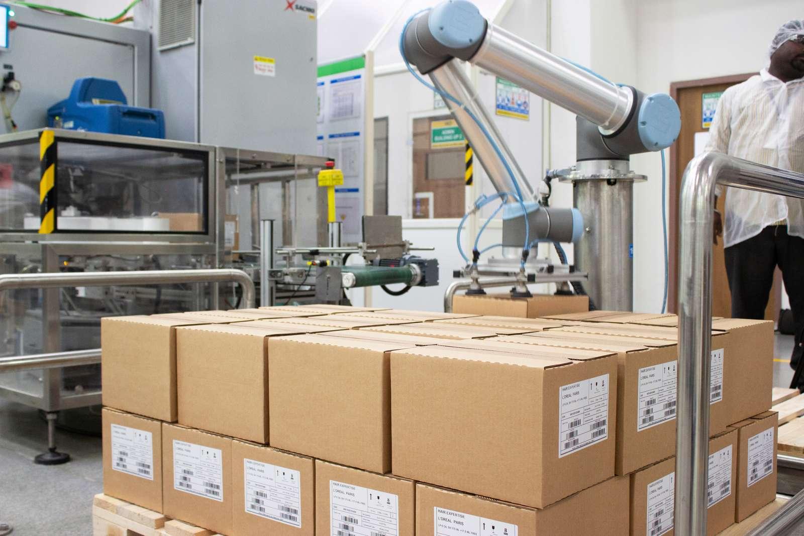 robots collaboratifs et emploi