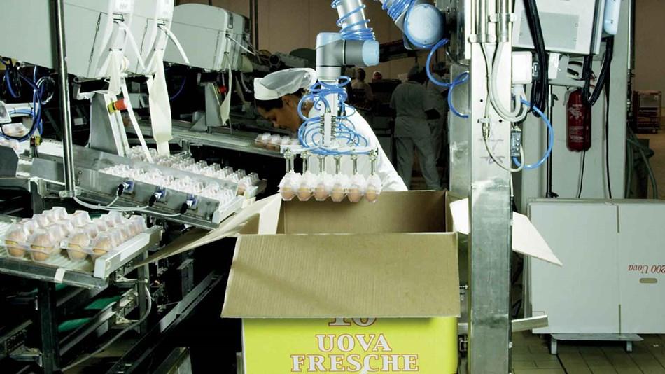 ur5_collaborative_robot_arm_packaging_palletizing_cascina_2